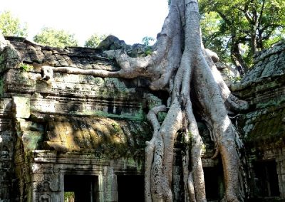 cambodge-angkor-rivemekong-600