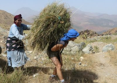 maroc-montagne-Yagour-ballot