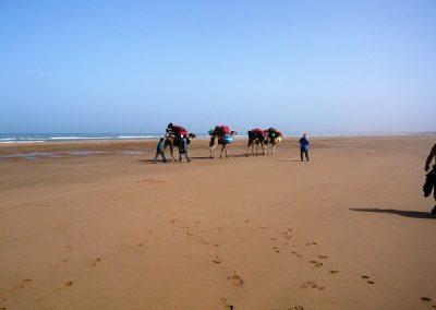 maroc-ocean-rando-plage-600