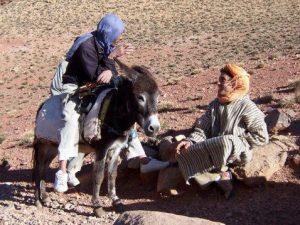 Maroc en liberté
