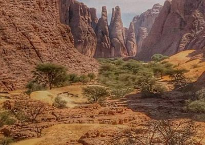 tchad-ennedi-ounianga-zakouma-6-600