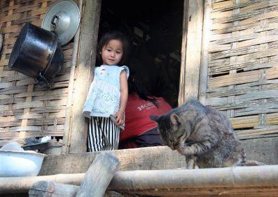 laos-chat-4185-800