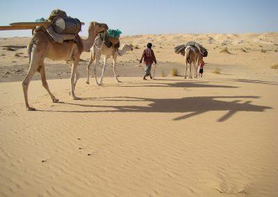 mauritanie-caravane-dunes-800