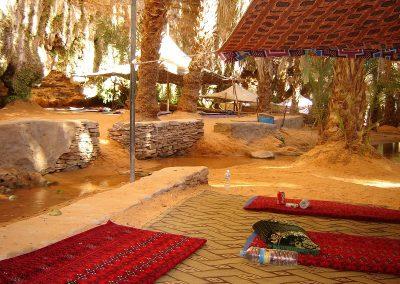 mauritanie-oasis-tergit-800