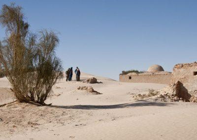 tunisie-arbuste-800