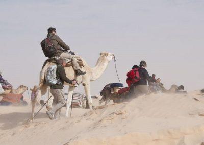 tunisie-poussiere-800