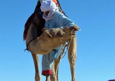 algerie-hoggar-chamelier-500