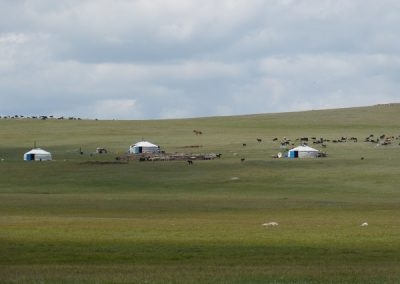 mongolie-p1010434-600