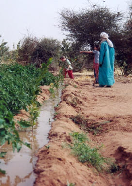 niger-agharous-arthur200834
