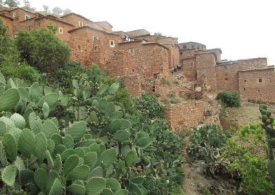 maroc-cuisine-village-rando-arganier-768x576