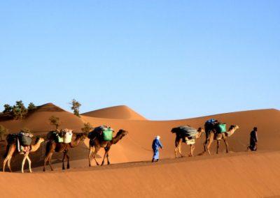 maroc-desert-zahar-Autissier-768x512