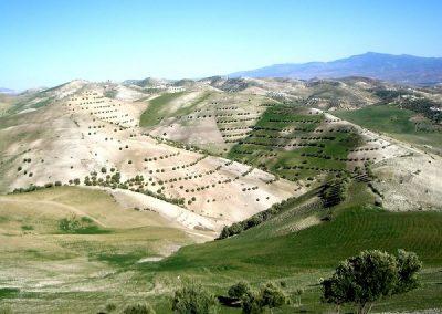 maroc-liberte-fes-route tazouta-600